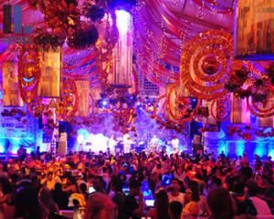 The Impact of Rio de Carnival 2014
