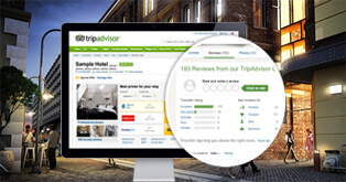 How To Maximize Reviews On Tripadvisor